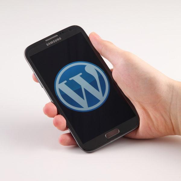 WordPress Genesis: Solucionar redirección después de actualizar