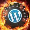 WordPress: La instalación de servidor óptima (2018)