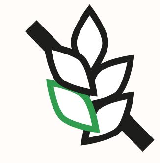 Área en verde coloreada por Elementor. En el SVG ese parte es negro total (#000000).